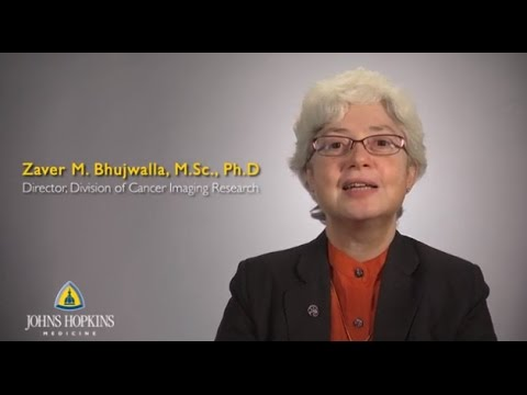 Zaver Bhujwalla, M.D. | Cancer Imaging Research - YouTube