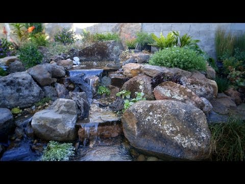 Pond Care | Spring Pond Maintenance 5 of 5