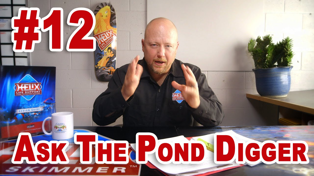 New Pond Start Up, Pond Size, Safety - Ask T.P.D. Show 12 - YouTube