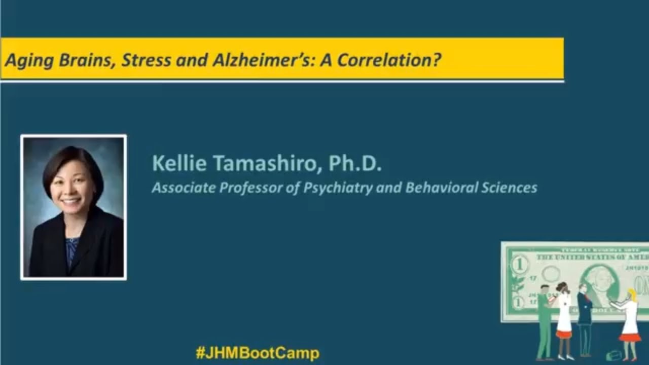 Aging Brains, Stress and Alzheimer's: A Correlation? | Kellie Tamashiro, Ph.D. - YouTube