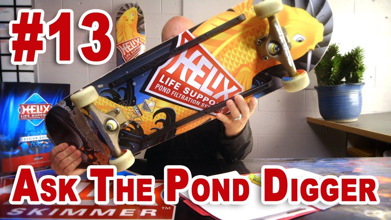 Handling Koi, Quarantine Ponds & Skateboards - Ask T.P.D. Show 13 - YouTube