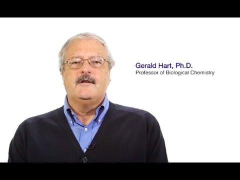 #TomorrowsDiscoveries: Why Eating Too Much Sugar Can Be Harmful – Dr. Gerald Hart - YouTube