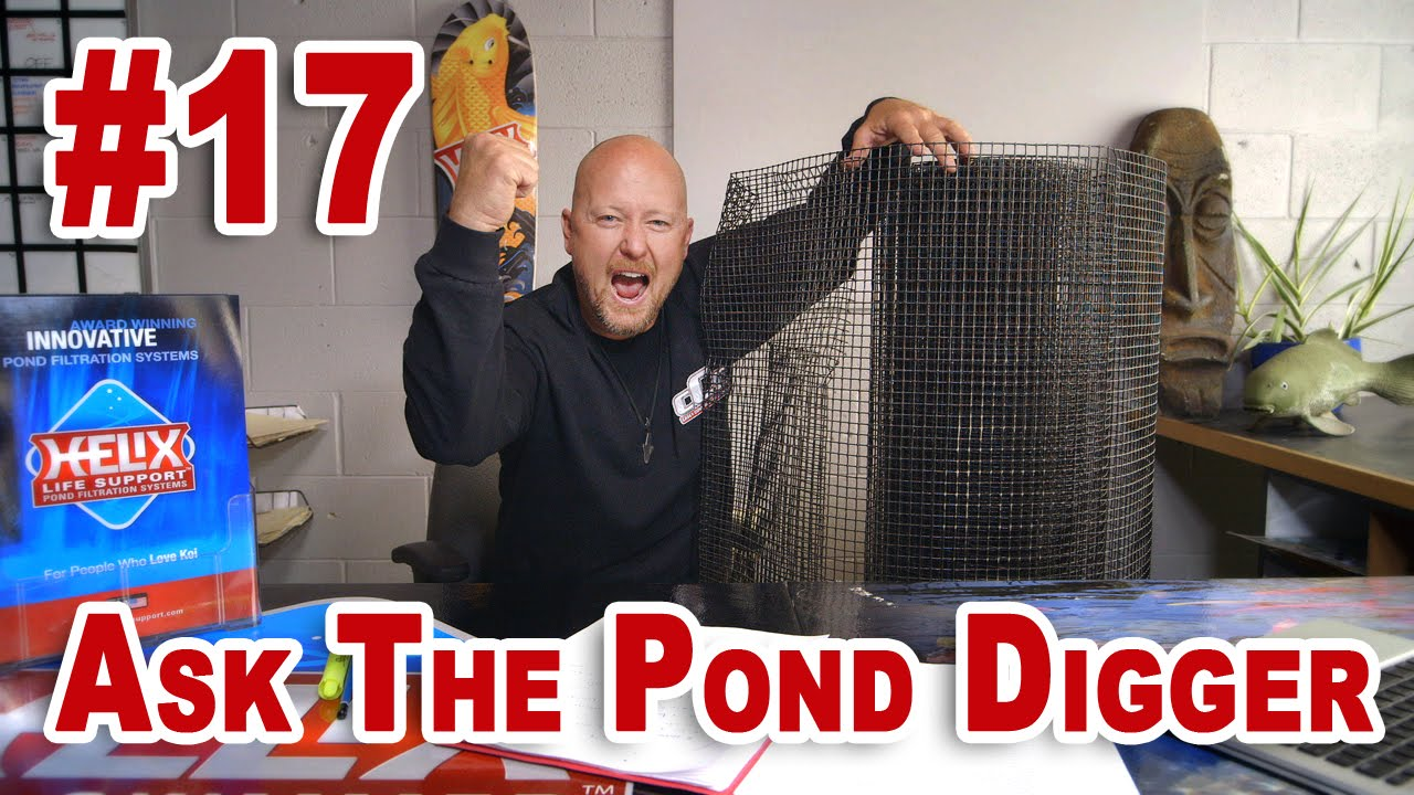 Rodents Eating Pond Liner, Preformed Ponds, and Waterfall Foam - Ask T.P.D. Show 17 - YouTube