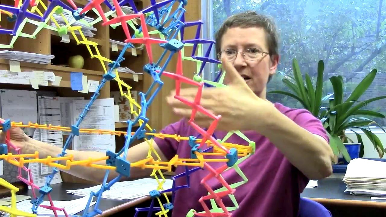 Katherine Wilson on the Structure of the Nucleus - YouTube