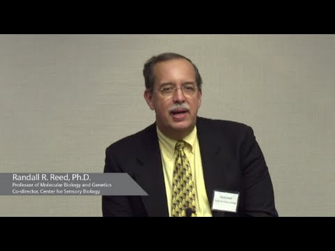 Sensory Systems and Smell | Randall R. Reed, Ph.D - YouTube