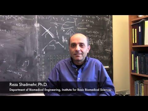 Reza Shadmehr on Rehabilitation and the Brain - YouTube